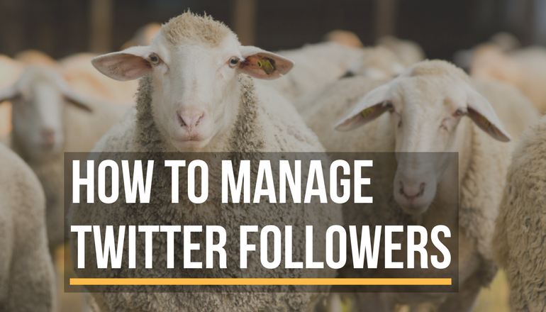How to manage Twitter followers