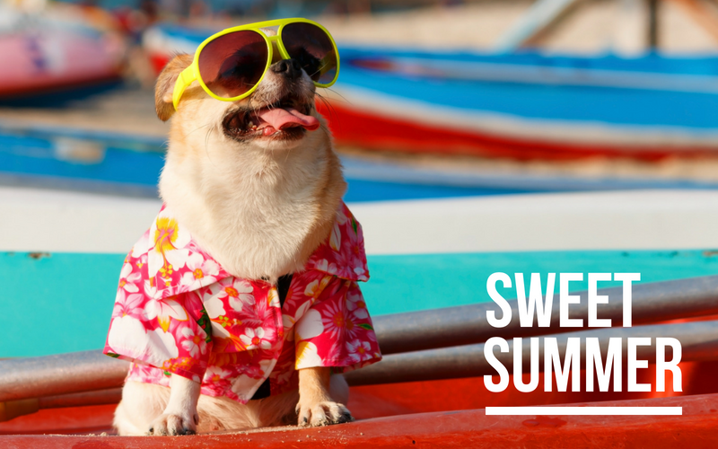 B2B marketing doesn't take a summer break. Neither should you.